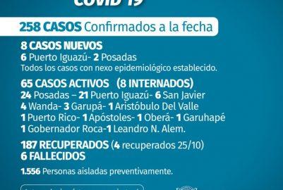 CORONAVIRUS: 8 CASOS NUEVOS PARA ESTE DOMINGO (25/10)